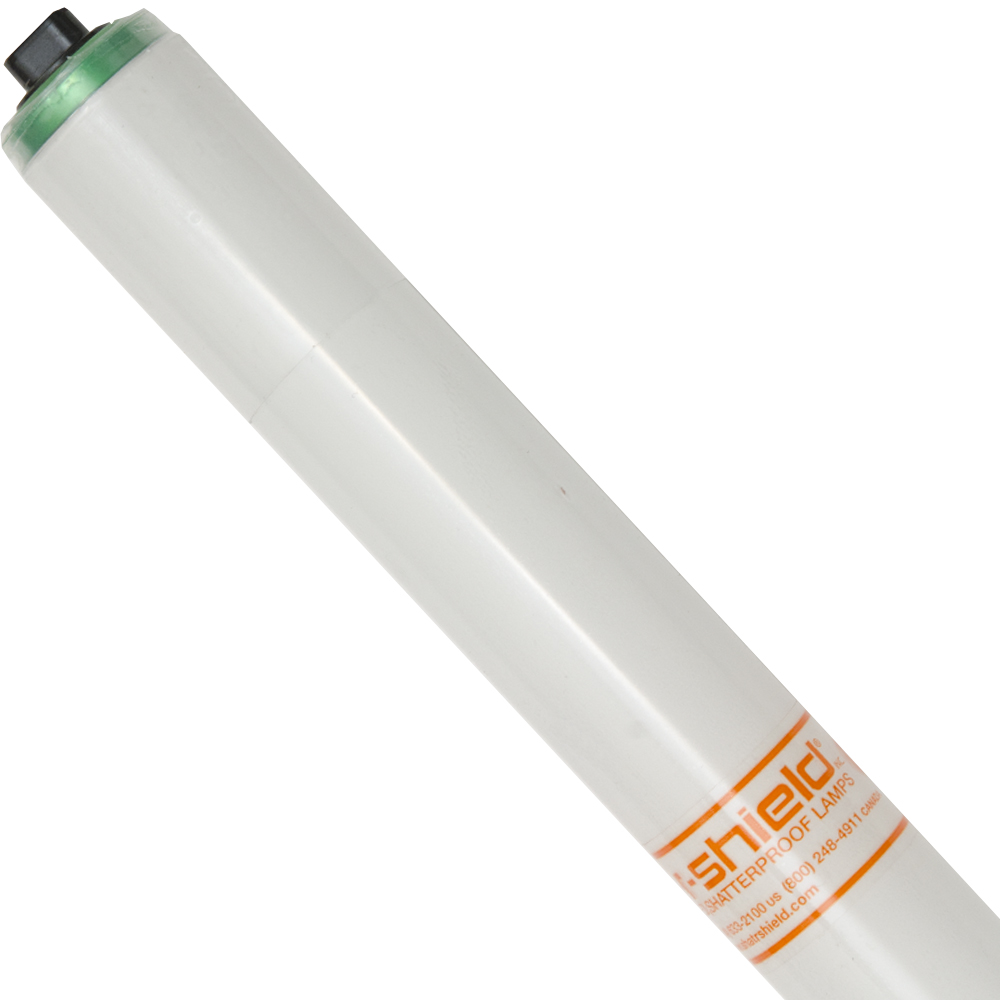 SHAT-R-SHIELD 57017F48T12/CW/HO/ALTO/TSC Safety CoatedFluorescent
