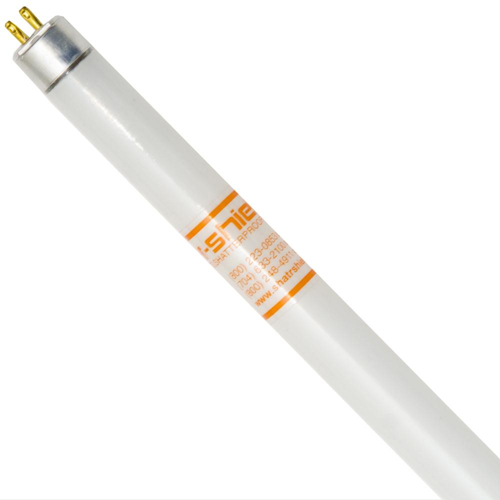 10010 SHA F4T5 CW (PKX25) LAMP
