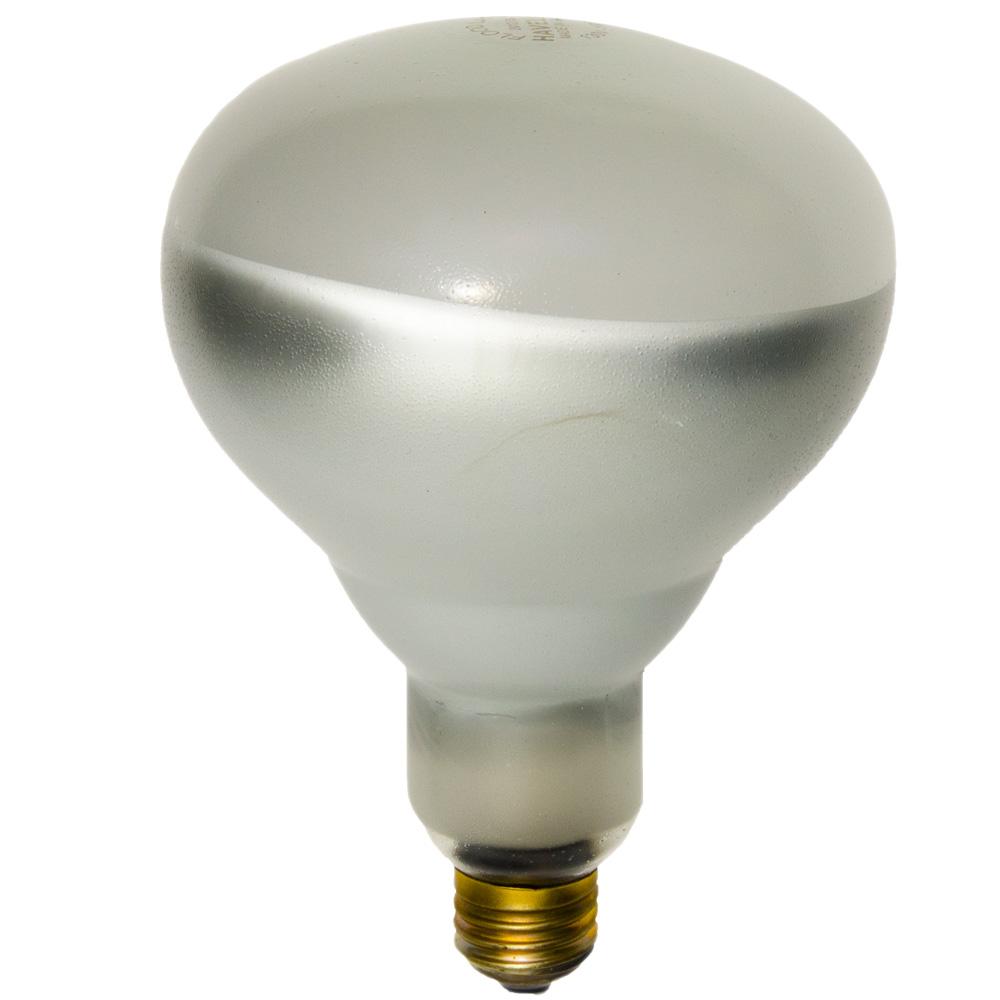 SHA01729 125BR40/1(SOFT GLASS)120V (PK X 6), SHAT-R-SHIELD